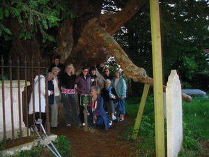 Claridge House group visiting oldest tree in England